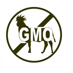 Anti-Genetically Modified Organism